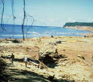 Tsunami in Flores Maumere 1992, Indonesien